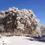Piękna zima w naszej inwestycji